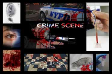 montage of forensic scenes with nypd police car at the center